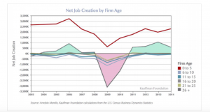 Net Job Creation by Firm Age